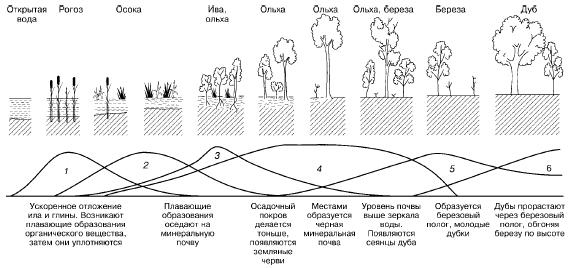 Изменение экосистемы в ходе