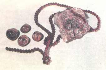 пропорции тройчатки от паразитов