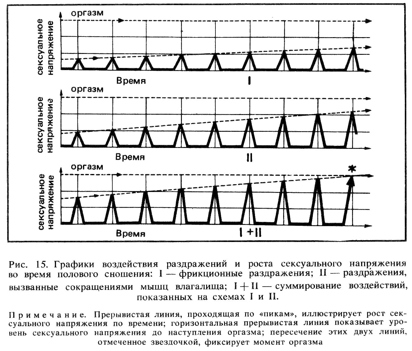 Схема фрикций в вагине 28 фотография