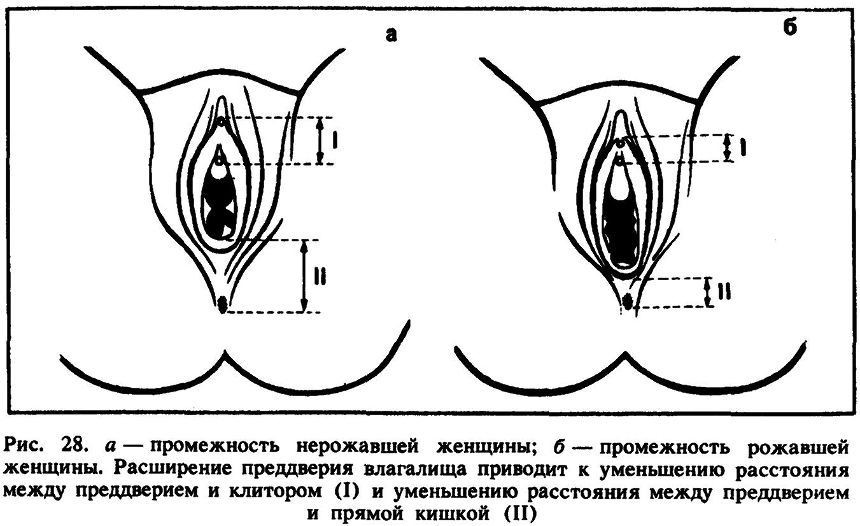 Оргазм у женщин/ фото 753-655