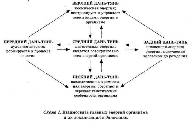http://www.plam.ru/healt/yenciklopedija_celebnogo_chaja/i_012.jpg