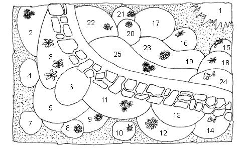 Схема осеннего