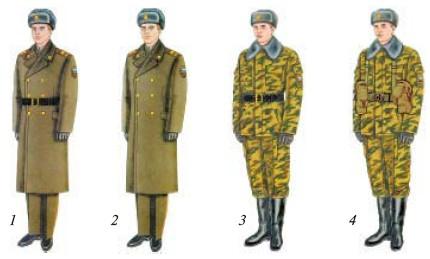 Приложение 5 военная форма одежды