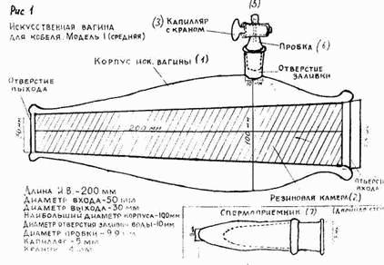 Инструкция вагина искусственная